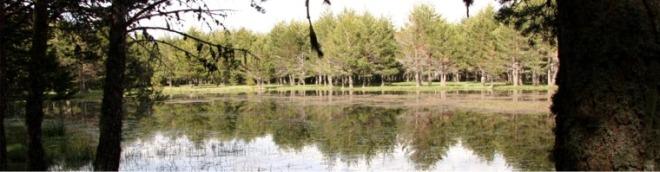Laguna del Cerriton